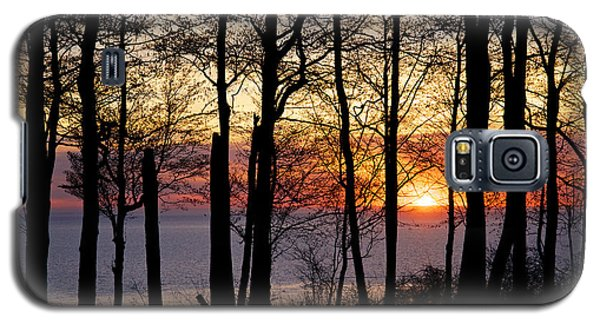 Lake Michigan Sunset With Silhouetted Trees Galaxy S5 Case