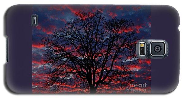 Lake Oswego Sunset Galaxy S5 Case by Nick  Boren