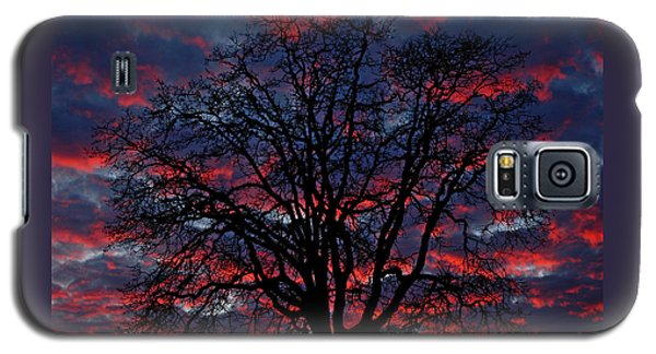 Galaxy S5 Case featuring the photograph Lake Oswego Sunset by Nick  Boren