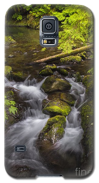 Lake Quinault Creek 2 Galaxy S5 Case