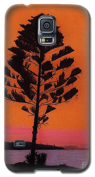 Galaxy S5 Case featuring the drawing Lake Sunset by D Hackett