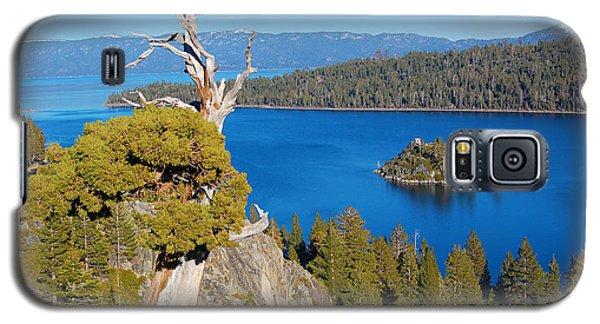 Lake Tahoe Reaching Tree Galaxy S5 Case