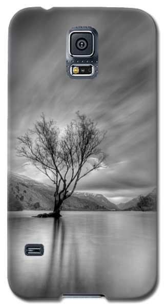 Lake Tree Mon Galaxy S5 Case by Beverly Cash