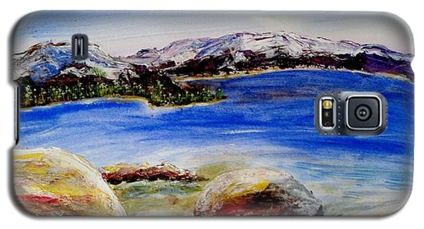 Galaxy S5 Case featuring the painting Lakeshore Boulders by Carol Duarte