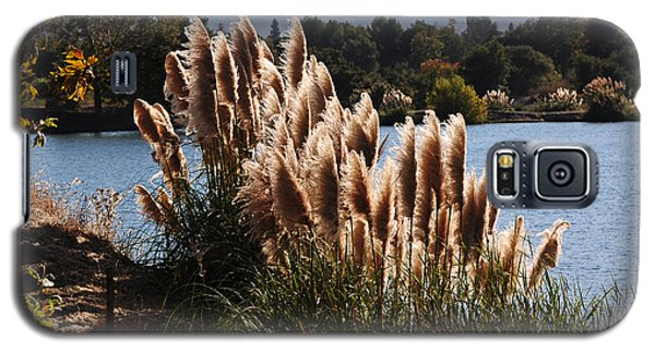Lakeside In Early Autumn Galaxy S5 Case