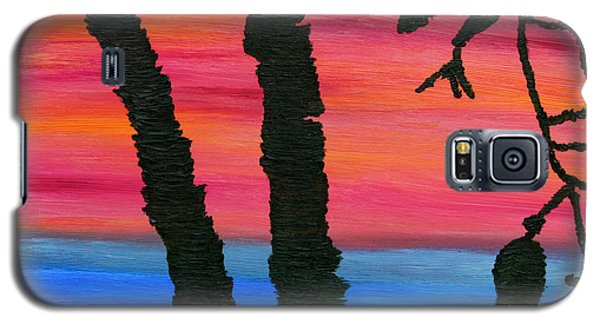 Lakeview Sunset Galaxy S5 Case