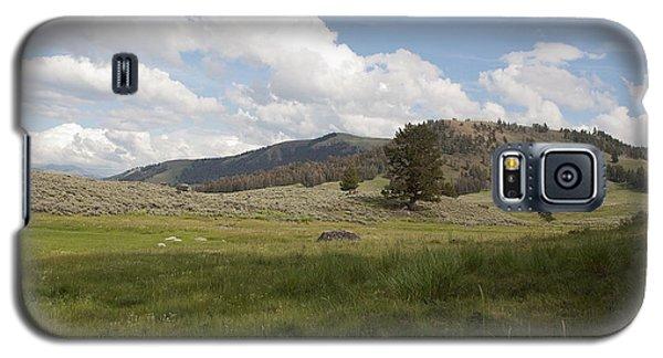 Lamar Valley No. 2 Galaxy S5 Case by Belinda Greb