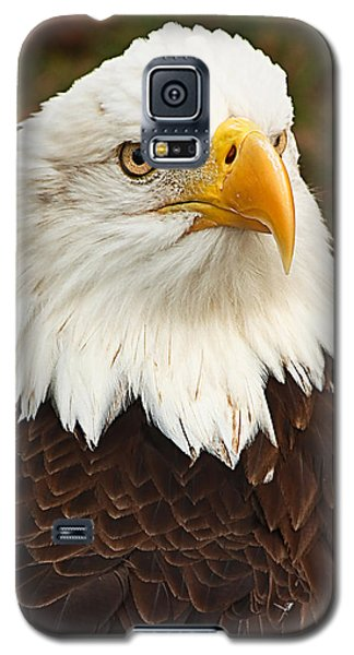 Galaxy S5 Case featuring the photograph Land Of The Free... by Tammy Schneider