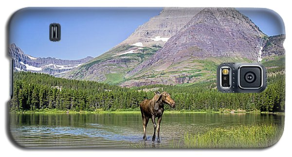 Land Of The Moose Galaxy S5 Case by Jack Bell