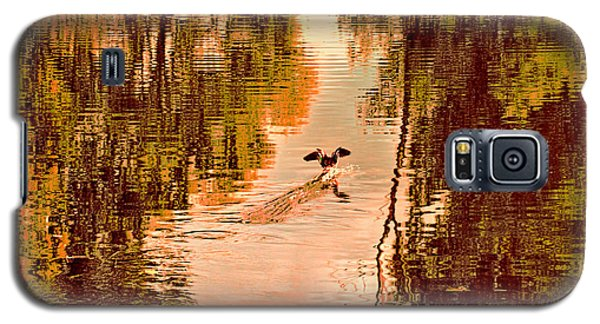 Landing Duck Absrtact Galaxy S5 Case