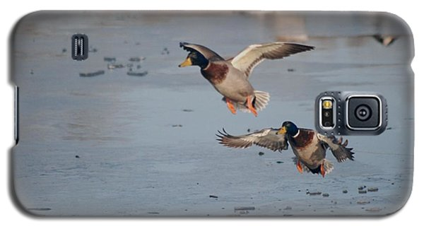 Landing Mallards Galaxy S5 Case