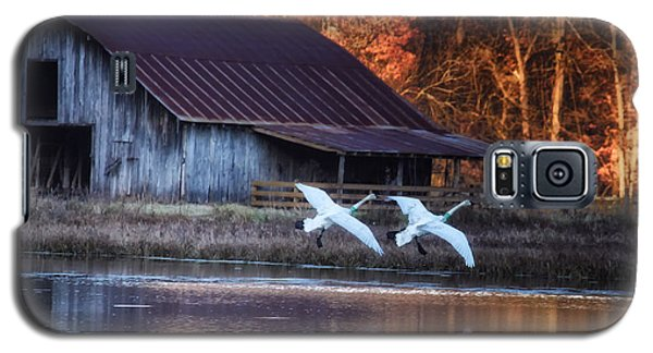 Landing Trumpeter Swans Boxley Mill Pond Galaxy S5 Case by Michael Dougherty