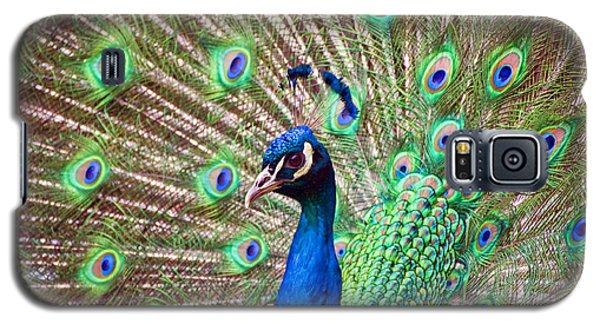 Landscape Peacock Galaxy S5 Case