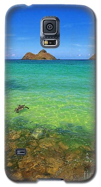 Galaxy S5 Case featuring the photograph Lanikai Beach Sea Turtle by Aloha Art