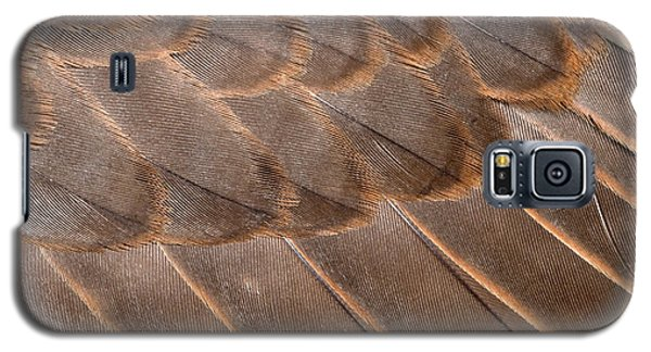 Lanner Falcon Wing Feathers Abstract Galaxy S5 Case