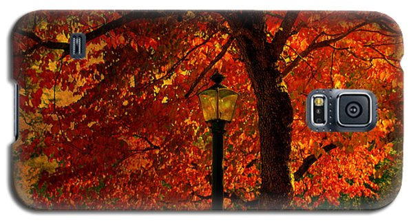 Lantern In Autumn Galaxy S5 Case