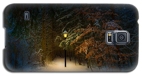 Lantern In The Wood Galaxy S5 Case