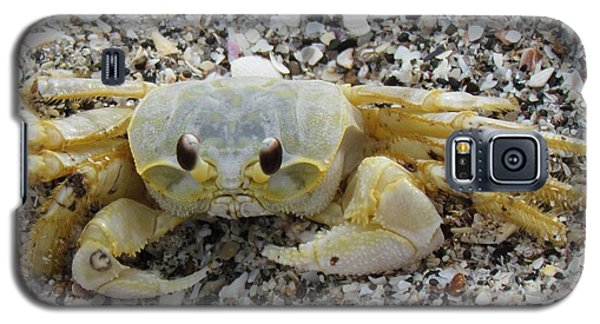 Galaxy S5 Case featuring the photograph Ghost Crab by Cynthia Guinn