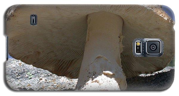 Large Mushroom Galaxy S5 Case