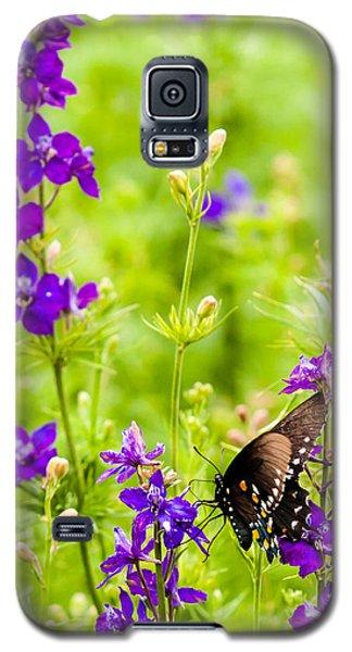 Larkspur Visitor Galaxy S5 Case by Melinda Ledsome