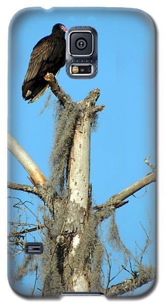 Larry Buzzard Vulture Galaxy S5 Case