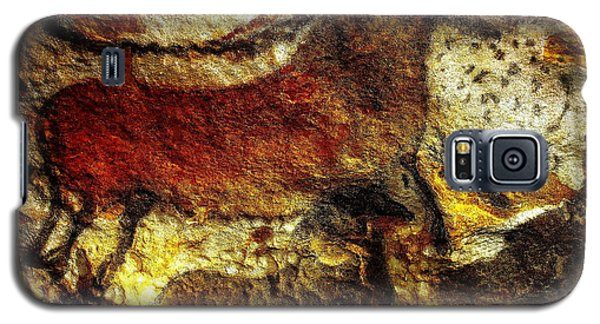 Galaxy S5 Case featuring the photograph Lascaux II No. 1 - Horizontal by Jacqueline M Lewis