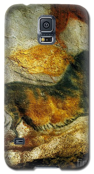Galaxy S5 Case featuring the photograph Lascaux II Number 4 - Vertical by Jacqueline M Lewis