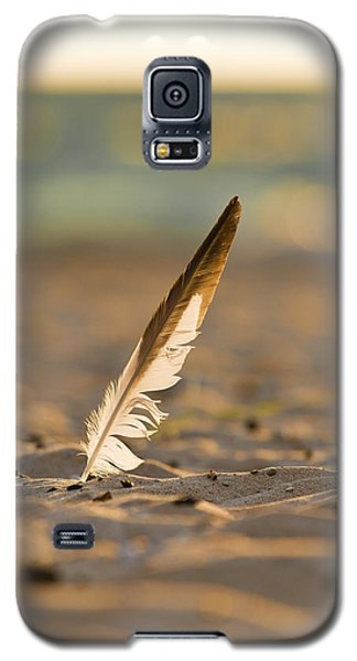 Last Days Of Summer Galaxy S5 Case by Sebastian Musial