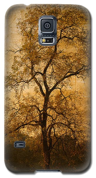 Last Fall Galaxy S5 Case by Lena Wilhite