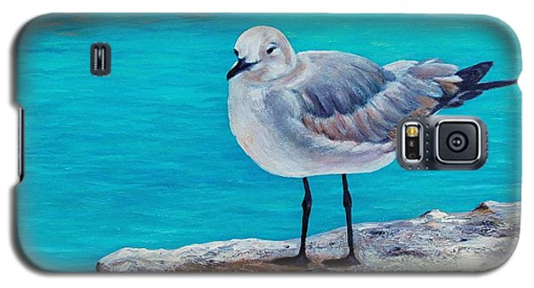 Last Gull Standing Galaxy S5 Case by Susan DeLain