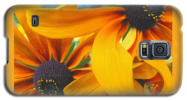 Last Holdouts Of The Season - Black Eyed Susans - Floral Photography Galaxy S5 Case