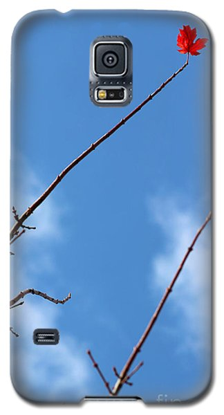 Last Leaf Standing Galaxy S5 Case