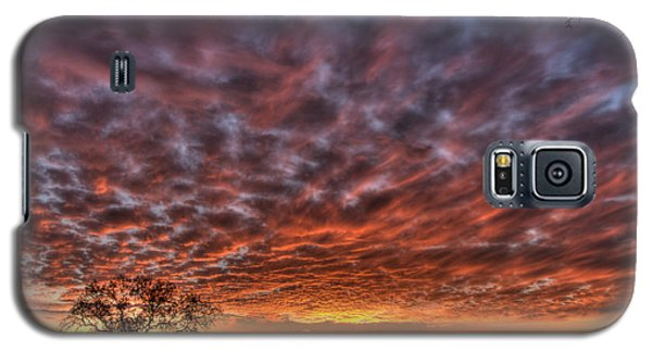 Last Light In Oracle Galaxy S5 Case