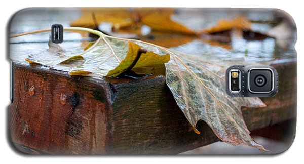 Galaxy S5 Case featuring the photograph Last Of The Leaves by Gwyn Newcombe