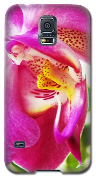 Galaxy S5 Case featuring the photograph Last Orchid Waves Goodbye by Judy Via-Wolff