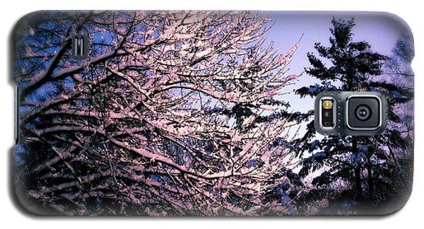 Last Peek Of Winter Sun Galaxy S5 Case