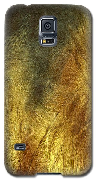 Late Afternoon Pampas Grasses Galaxy S5 Case