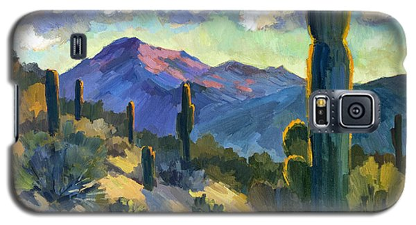 Late Afternoon Tucson Galaxy S5 Case by Diane McClary