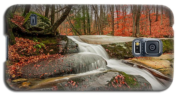 Late Fall On The Forest Floor Galaxy S5 Case