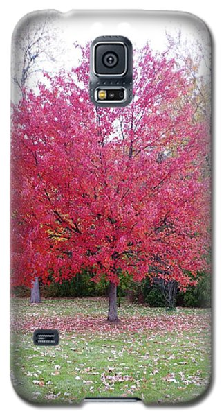Galaxy S5 Case featuring the photograph Late Fall by Sheila Byers