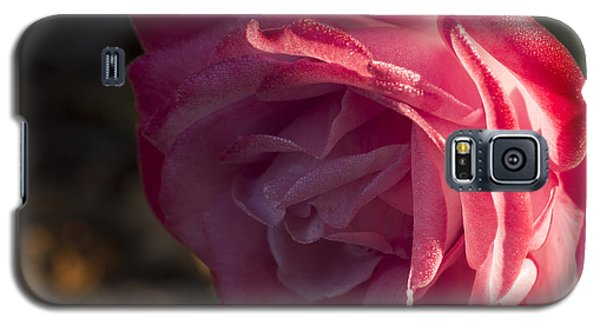 Galaxy S5 Case featuring the photograph Late Fall  Surprise by Wanda Brandon