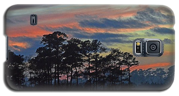 Galaxy S5 Case featuring the photograph Late Sunset Trees In The Mist by Bill Swartwout