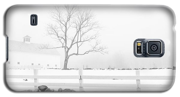 Late Winter Galaxy S5 Case by Alana Ranney