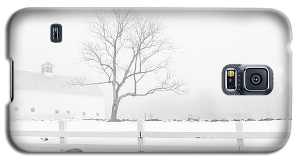 Late Winter Galaxy S5 Case