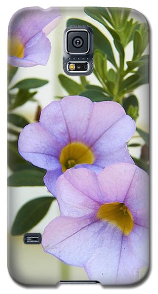 Galaxy S5 Case featuring the photograph Lavendar Pink by Judy Via-Wolff