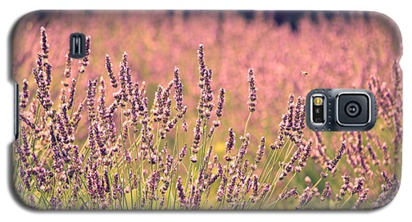 Galaxy S5 Case featuring the photograph Lavender Dreams by Lynn Sprowl