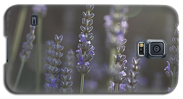 Galaxy S5 Case featuring the photograph Lavender Flare. by Clare Bambers