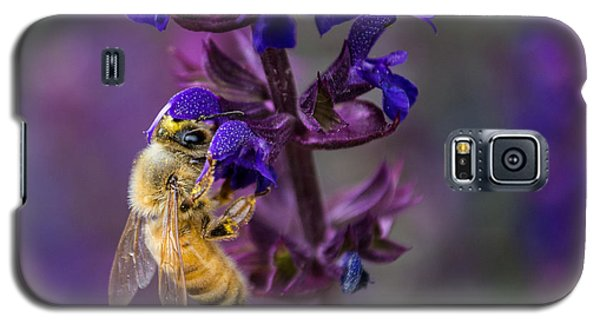 Galaxy S5 Case featuring the photograph Lavender Lady by Rhys Arithson