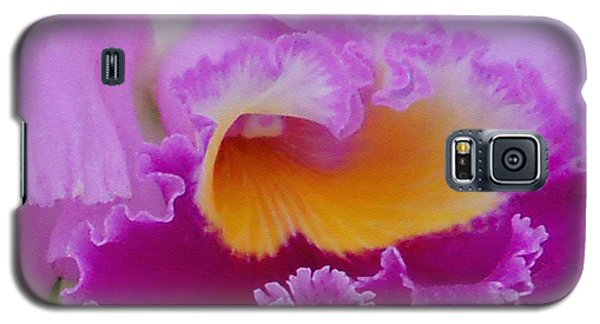 Galaxy S5 Case featuring the photograph Lavender Orchid by Aimee L Maher Photography and Art Visit ALMGallerydotcom