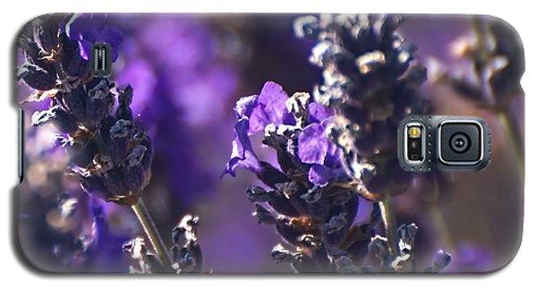 Lavender Stems Galaxy S5 Case by Kari Nanstad